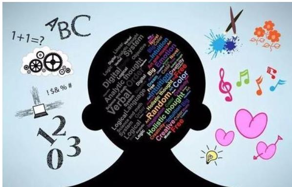 塑料化学邻苯二甲酸酯对儿童大脑发育的影响