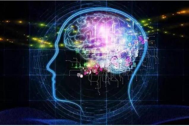 迷幻剂通过破坏大脑屏障来改变意识