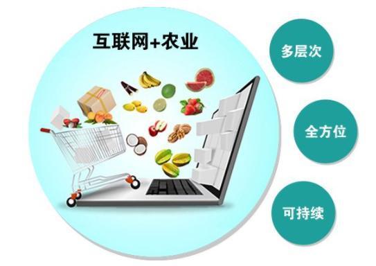 互联网+(江西生态农业网) 农产品推进模式